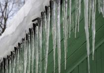 На Москву пришло резкое потепление – еще вчера мы кутались в шубы, а уже сегодня на улицах вот-вот зазвенит капель