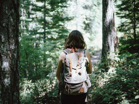 Заниматься экстремальными видами туризма и при этом чувствовать себя в полной безопасности смогут граждане, которые выберут себе опасные маршруты на территории Подмосковья