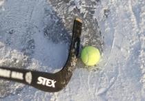 В Чите 23 января на базе «Березка» пройдут соревнования для студентов читинских вузов по хоккею на валенках