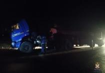 Омские автоинспекторы помогли водителю грузовика