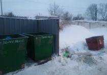 Два в одном: на улицах Оренбурга встречаются странные площадки для мусора