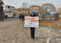 Читинская общественница Марина Савватеева начала одиночный пикет в поддержку оппозиционера Алексея Навального