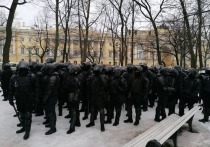 Силовиков закидывали снежками на Сенатской площади