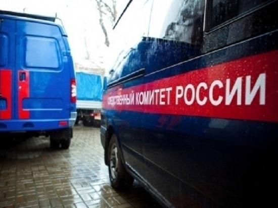 На ударившего двух полицейских в Петербурге мужчину завели дело