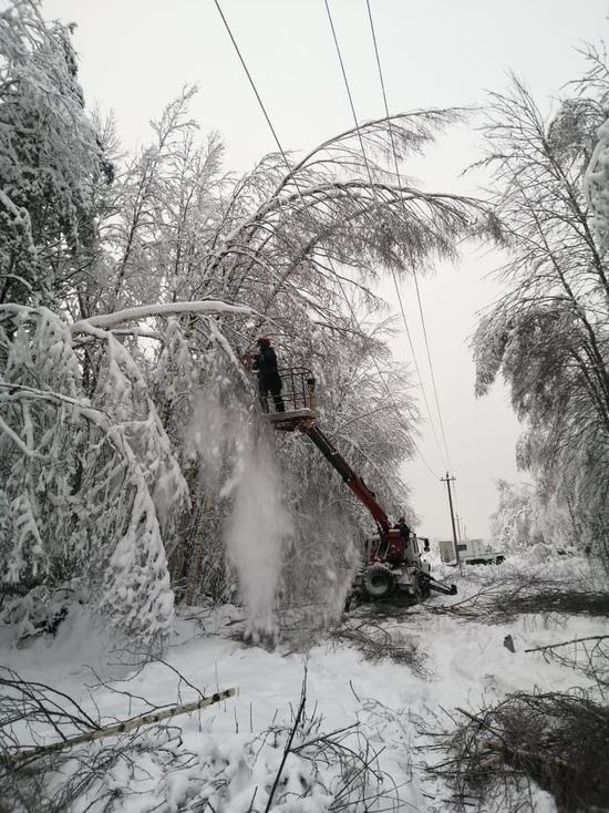 Ряд населённых пунктов Тверской области остался без света - ведутся работы по восстановлению