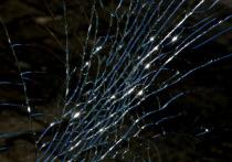 Авария в Донецке: автомобиль врезался в дерево, погибли 2 человека