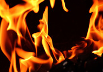 Пожар в Енакиево уничтожил оборудование ЕМЗ