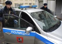 В Москве участницы Pussy Riot сбили полицейского при задержании