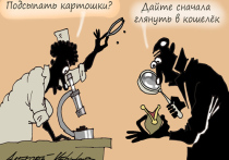 едавняя инициатива Картофельного союза России ввести в оборот торговых сетей картофель эконом-класса для малообеспеченных россиян вызывает неоднозначную реакцию