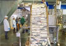 Рыбоконсервный завод в Серпухове модернизирован