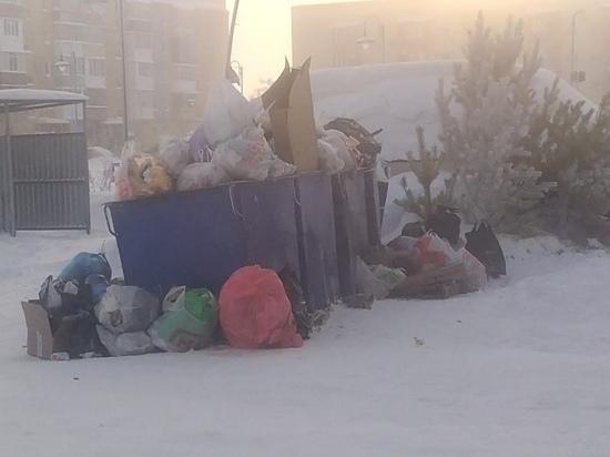 Из-за морозов в ЯНАО снова возникли перебои с вывозом мусора