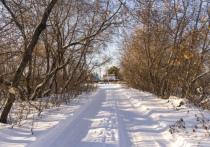 Потепление придет в Омск только к среде