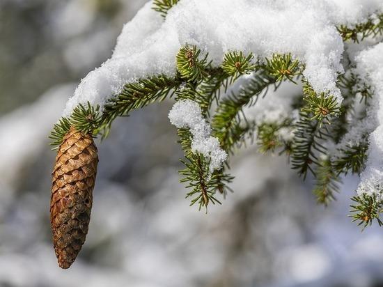 В Гидрометцентр рассказали о резких скачках температур в Азиатской России