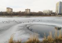 Погода в ДНР до конца недели будет теплой