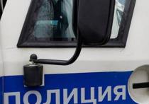 Полицейские Магадана нашли новогоднего грабителя