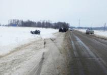 В Мари-Турекском районе на дороге перевернулся автомобиль