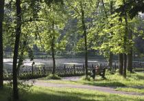 Порядка 120 миллионов рублей потратят на реконструкцию серпуховского парка