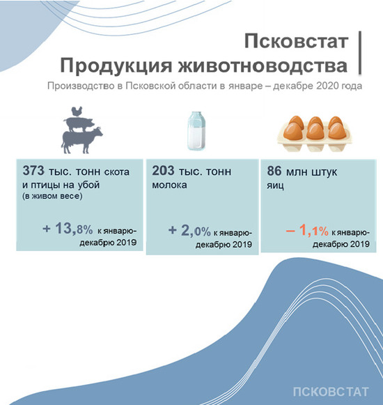 В Псковской области произвели почти на 14% больше птицы, фото-2
