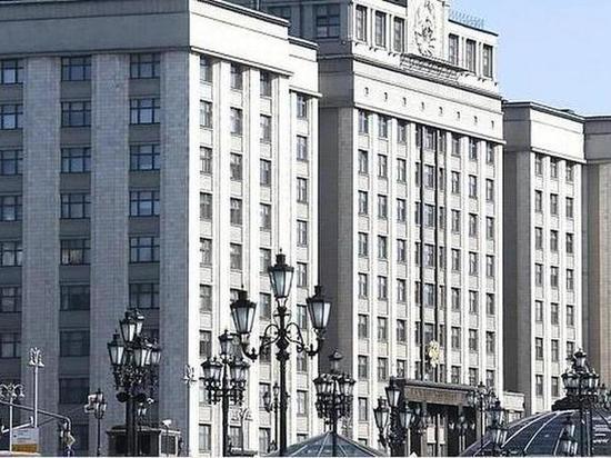 В Госдуме проанализировали фейки по теме протестных акций