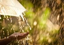 Уже сегодня в Омске возможен январский дождь