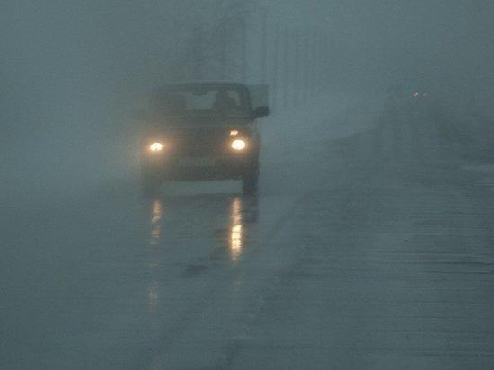 Погода в Тамбовской области: мокрый снег и сильный ветер