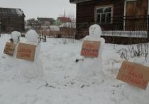 Северяне оценили действия холмогорской полиции по пикету снеговиков