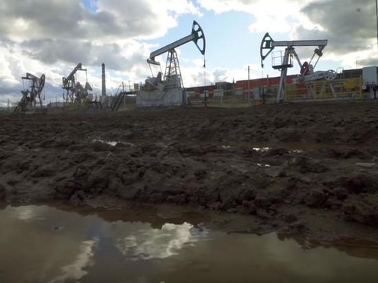 Российские нефтегазовые компании обеспечили акционеров наибольшим доходом за три года