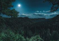 Ночью жители России при условии хорошей погоды смогут увидеть в ночном небе полную луну