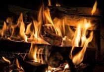 Жителям Серпухова напомнили правила поведения при пожаре