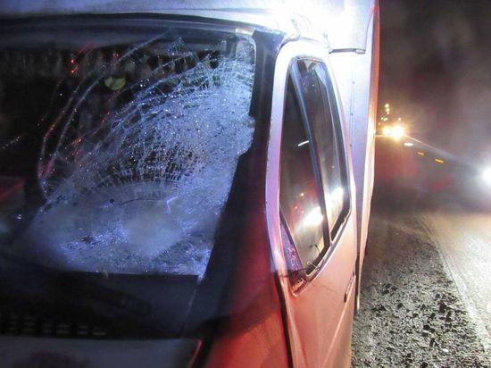 Пешеход попал в реанимацию после наезда ГАЗели в Чебоксарах