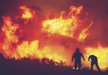 Подразделение лесопожарного центра «Север» откроют в Забайкалье