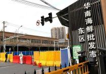 В китайском Ухане приступила к работе группа экспертов ВОЗ, расследующих появление коронавируса