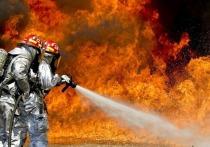 В Румынии горят больницы