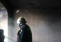 В рязанской деревне на пожаре сгорел человек