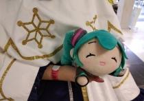 Сегодня, 30 января, в Туле в Городском концертном зале прошел десятый аниме-фестиваль Yuki no Odori (YnO).