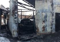 Ночью в рязанском поселке сгорел гараж с машиной