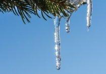 Морозов больше не будет. В Алтайском крае прогнозируют резкое потепление