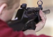ФСБ пресекла стрельбу в одной из подмосковных школ