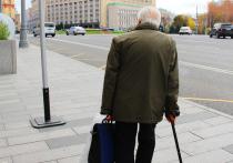 Правительство подготовило предложения об индексации пенсий работающим пенсионерам
