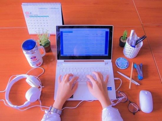 Блогер – это модно: почему многие хотят зарабатывать в соцсетях, но получается у единиц