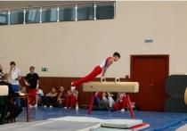 Областные соревнования по спортивной гимнастике прошли в Пущино