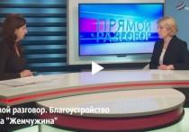 Юлия Купецкая рассказала серпуховичам почему историю с вейк-парком пока остается за скобками