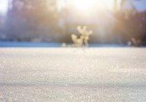 Синоптики пообещали теплый, но снежный февраль в Алтайском крае