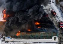 Путин посмертно наградил погибших на складе красноярских пожарных