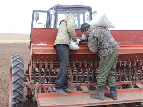 Площадь сельхозпосадок в Якутии намерены увеличить на 2 тыс. га