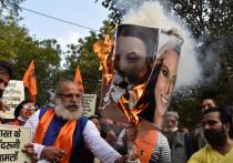 Портрет шведской активистки Греты Тунберг сожгли в Дели после ее твитов о протестах индийских фермеров