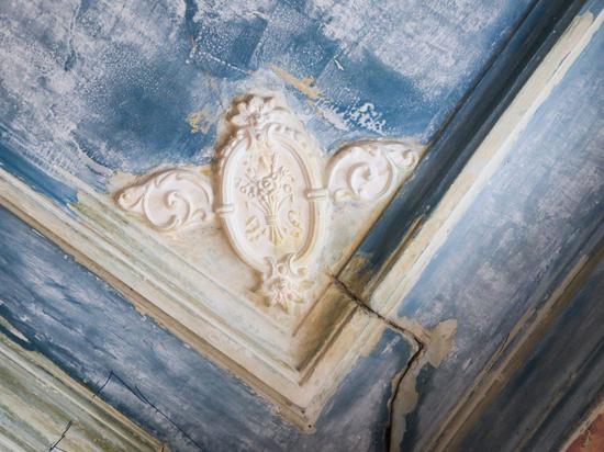 В музее Добролюбова обнаружили потолочные розетки 19 века