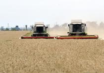 Глава Минэкономразвития Максим Решетников предложил с 1 апреля ввести демпферный механизм на рынке зерна по аналогии с тем, который используется на топливном