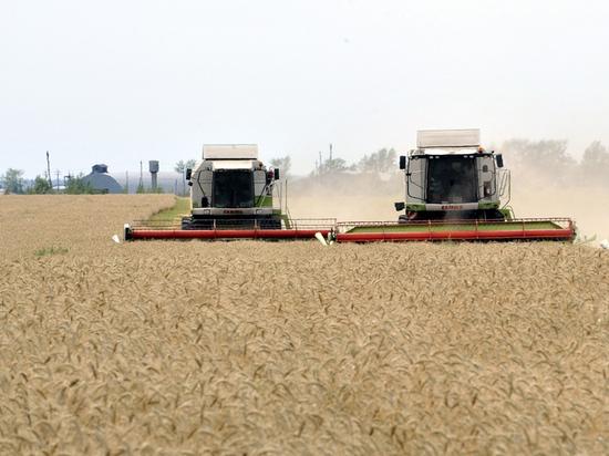 Ручное управление продовольственного рынка провалилось