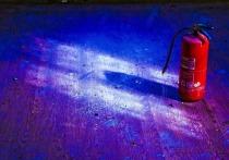 В воскресенье, 7 февраля, в мире отмечается День огнетушителя